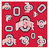 Ohio State Silky Team Scarf