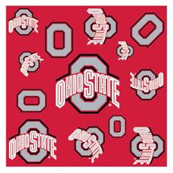 Ohio State Silky Team Scarf